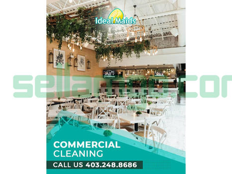 Ideal Maids Inc. Commercial Cleaning Ser...