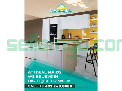 Ideal Maids Professional Disinfecting an...